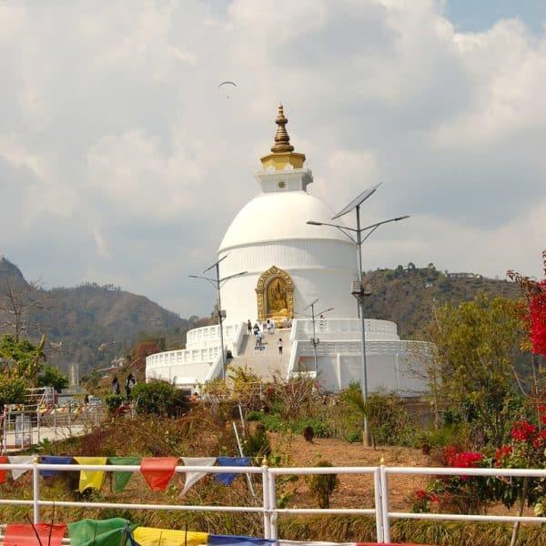 Nepal Pumdi 8