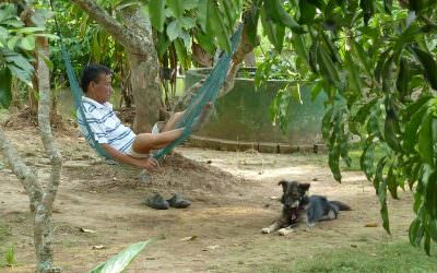thoi son local package