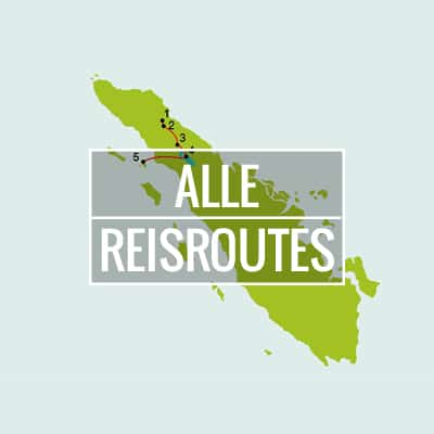 Alle reisroutes The Local Package