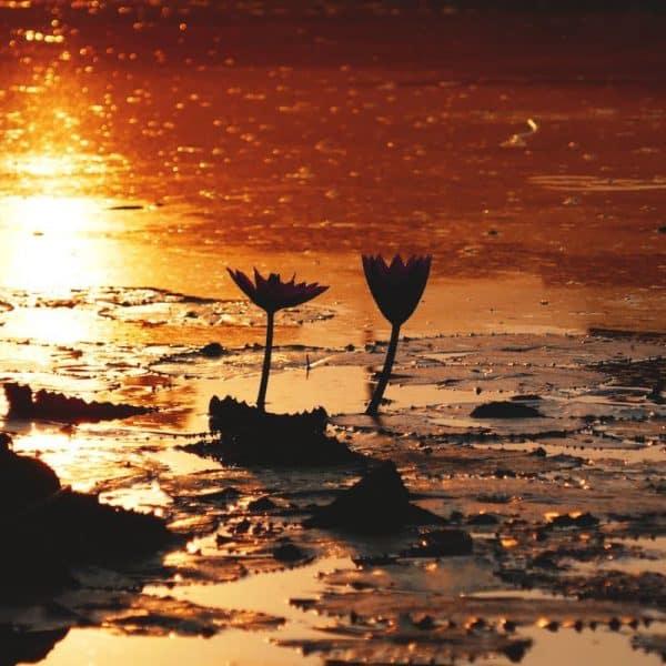 Fotos-Cambodja-30-600x600