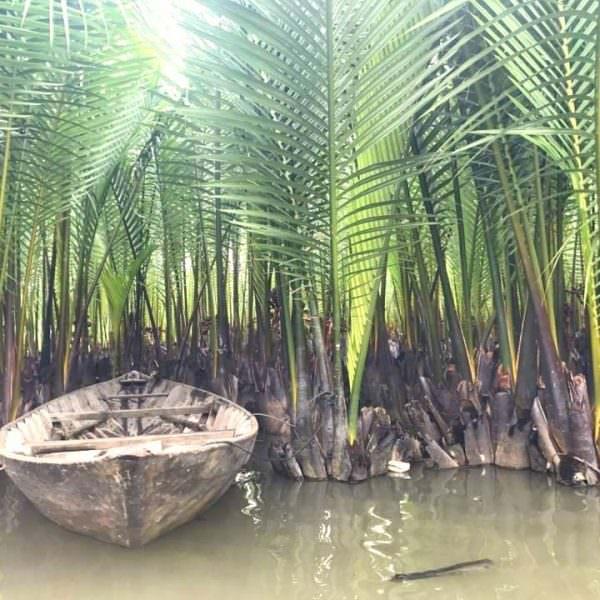 Thoi Son Mekong