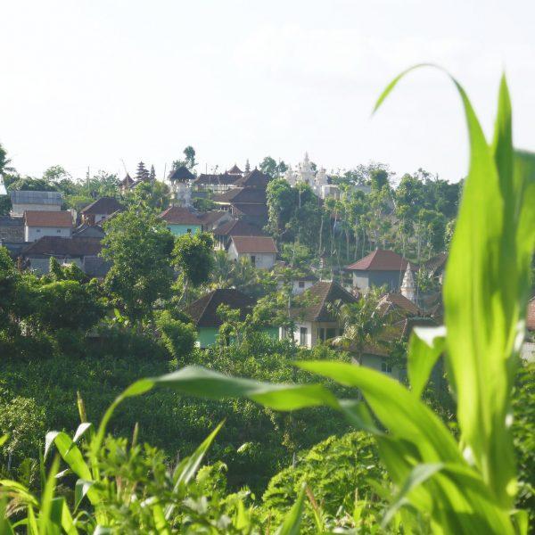 Nusa Penida 20